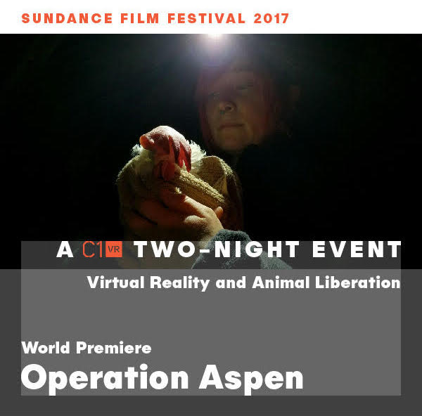 Operation Aspen, Condition One, Sundance
